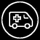 Icone_Pharmatools_dsm delivery sistem